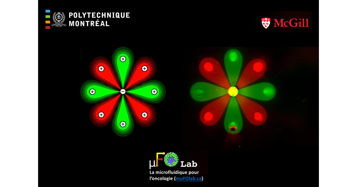Motif de fleur produit par microfluidique multipolaire. Étienne Boulais (théorie), Pierre-Alexandre Goyette (expérience).