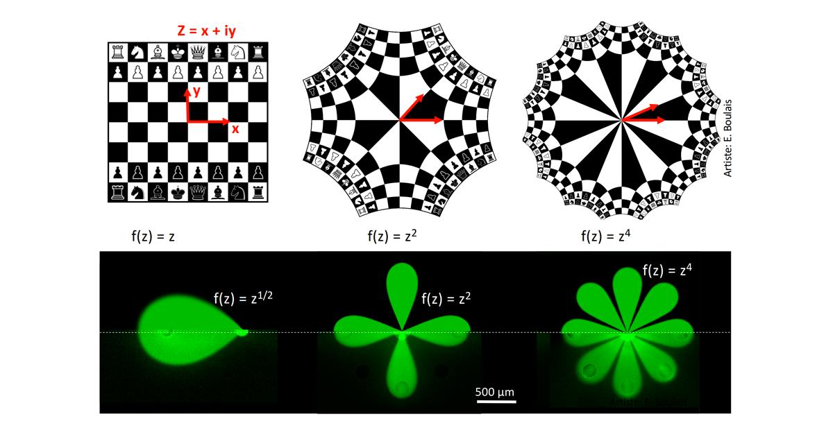 Illustration de l'effet des transformations mathématiques utilisées, d'abord sur l'image d'un jeu d'échec, puis sur les multipôles microfluidiques.