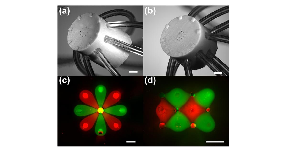 Dispositif microfluidique fabriqué par impression 3D et images de motifs microscopiques de fluides créés à l'aide de solutions fluorescentes.