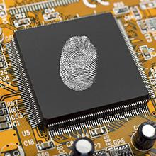 Un baccalauréat en cybersécurité bientôt décerné à Polytechnique Montréal