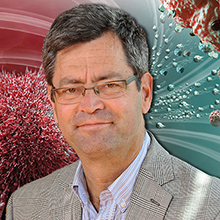 Prix du public Découverte Québec Science de l'année 2016 : le professeur Sylvain Martel et son équipe parmi les finalistes