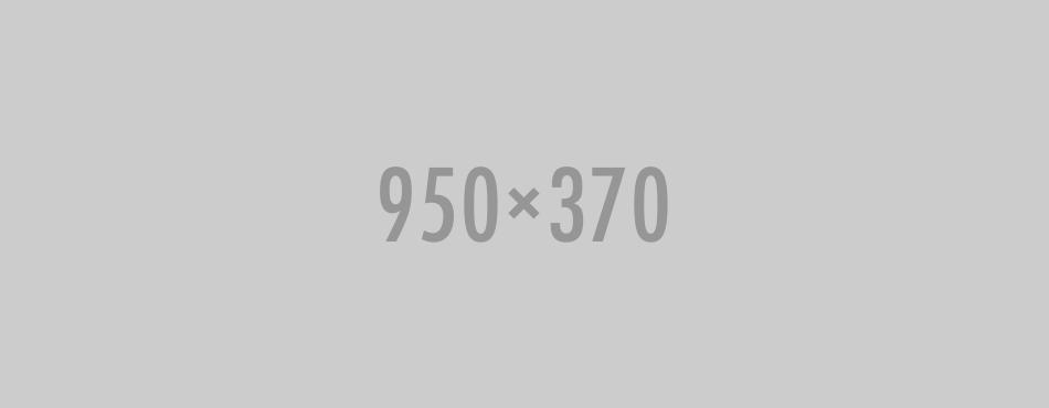 950x370