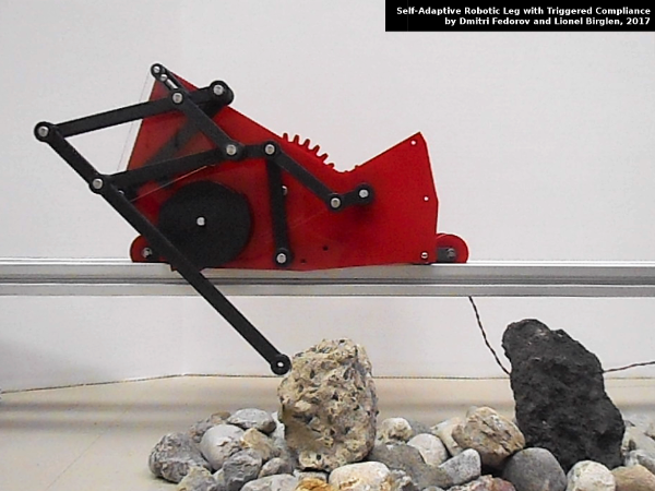 Self-Adaptive Robotic Leg