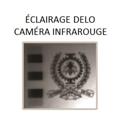Photographie du blason de Polytechnique Montréal réalisée à l'aide d'une caméra infrarouge.